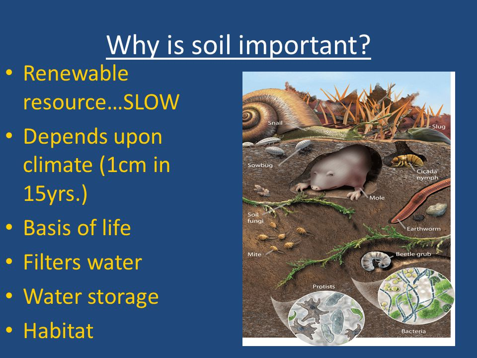 Why is soil important Renewable resource…SLOW