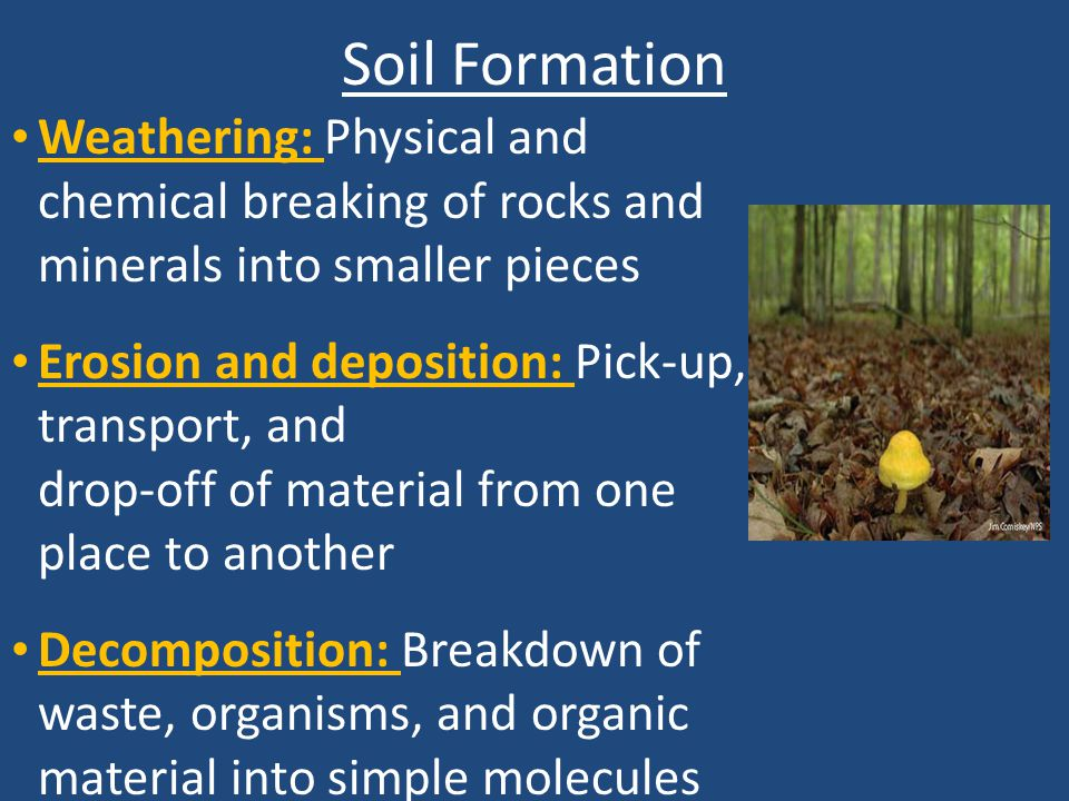 Chapter 12 soil and agriculture ppt video online download for Soil forming minerals