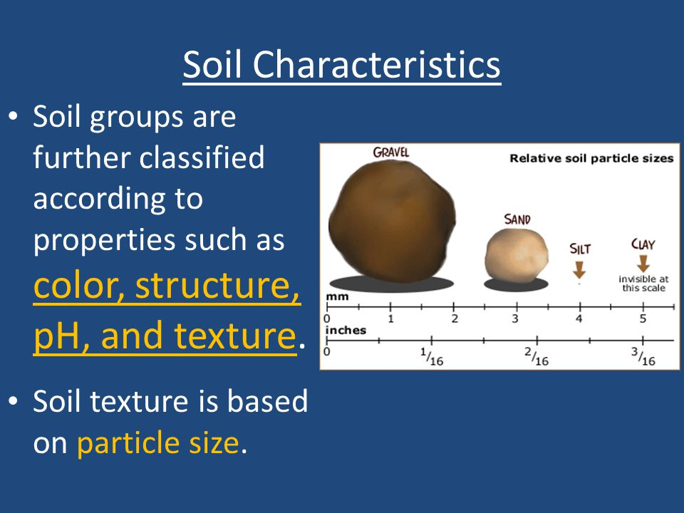 Soil Characteristics Soil groups are further classified according to properties such as color, structure, pH, and texture.
