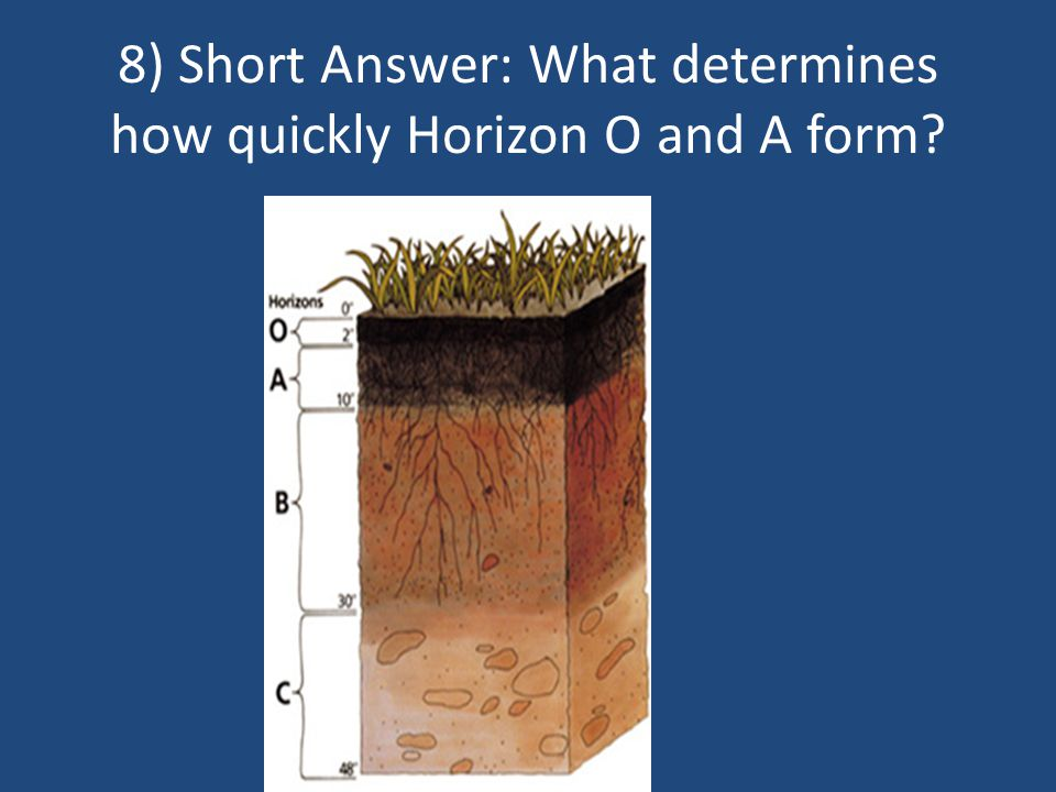 8) Short Answer: What determines how quickly Horizon O and A form