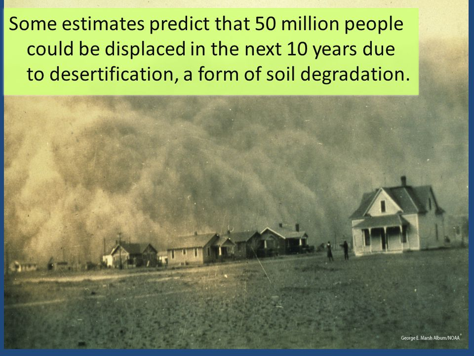 Some estimates predict that 50 million people could be displaced in the next 10 years due to desertification, a form of soil degradation.
