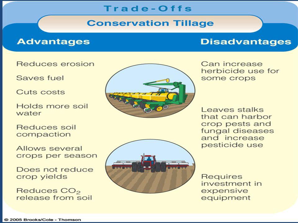 Tillage vs. Conservation Tillage
