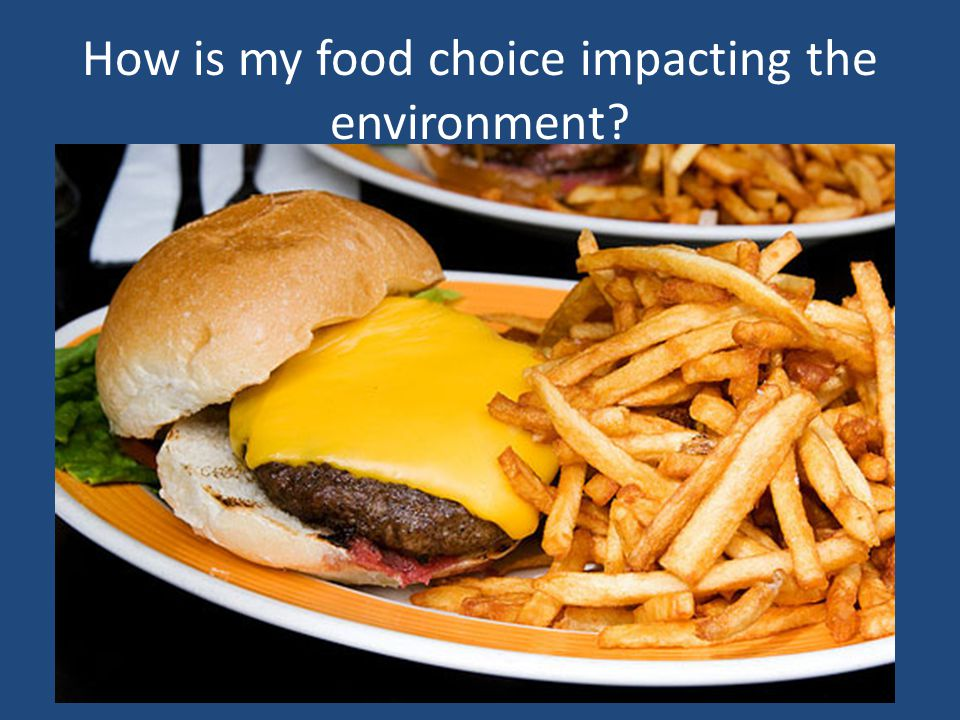 How is my food choice impacting the environment