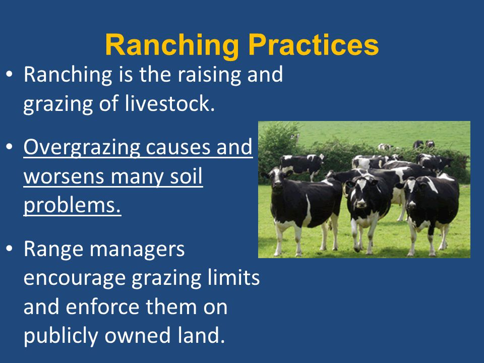 Ranching Practices Ranching is the raising and grazing of livestock.