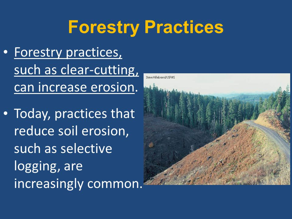 Forestry Practices Forestry practices, such as clear-cutting, can increase erosion.