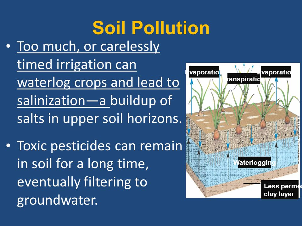 Soil Pollution Too much, or carelessly timed irrigation can waterlog crops and lead to salinization—a buildup of salts in upper soil horizons.