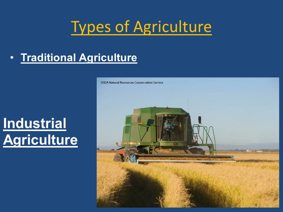 Types of Agriculture Traditional Agriculture Industrial Agriculture