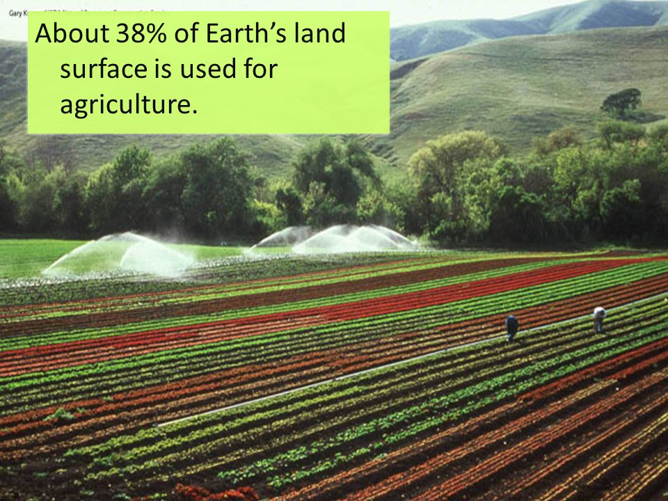 About 38% of Earth's land surface is used for agriculture.