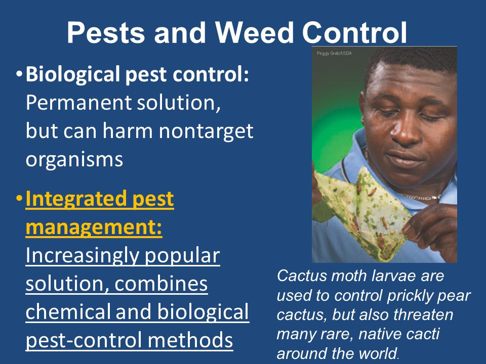 Pests and Weed Control Biological pest control: Permanent solution, but can harm nontarget organisms.