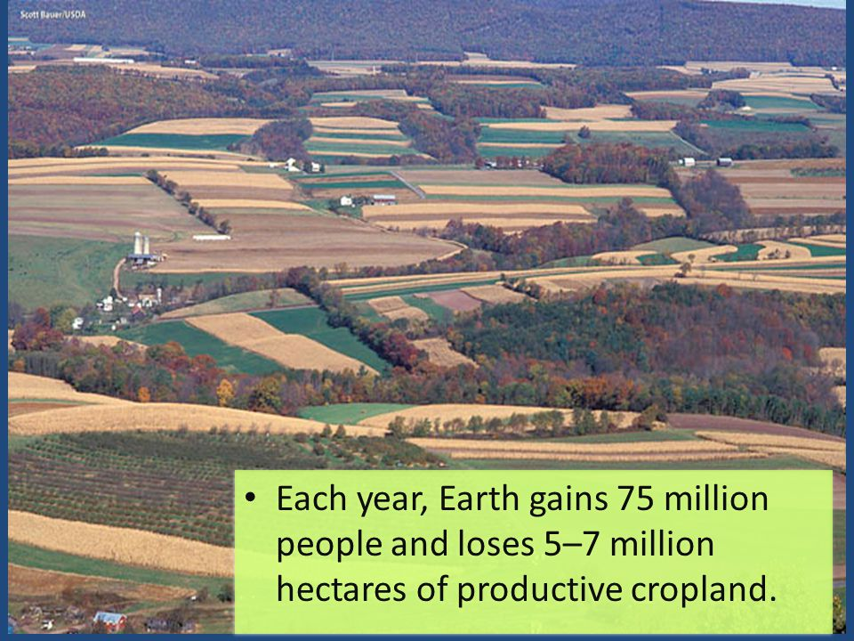 Each year, Earth gains 75 million people and loses 5–7 million hectares of productive cropland.