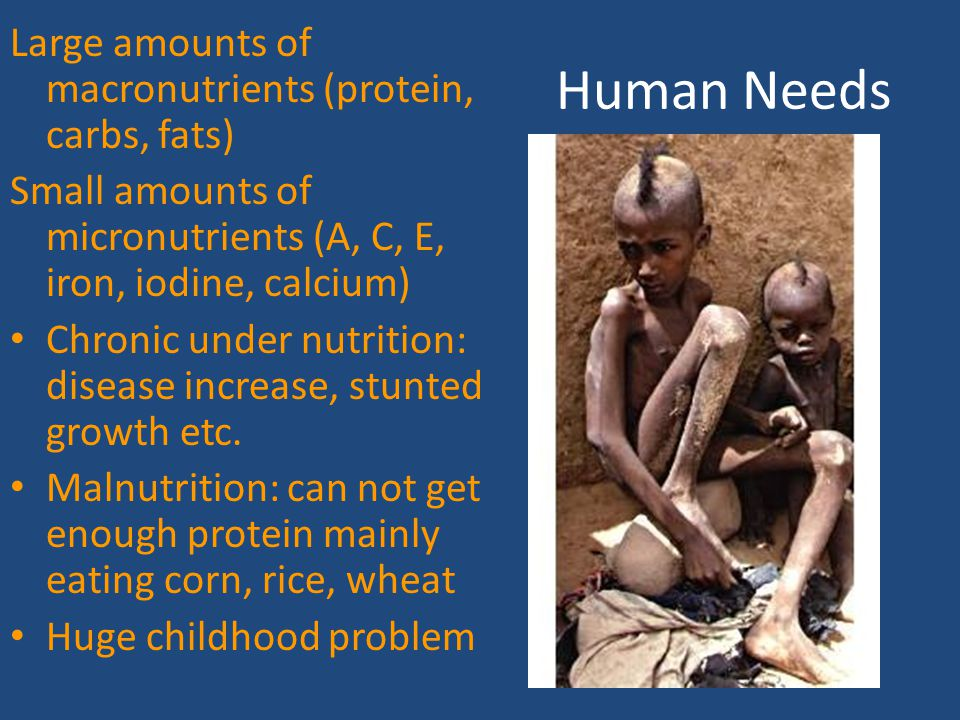 Human Needs Large amounts of macronutrients (protein, carbs, fats)
