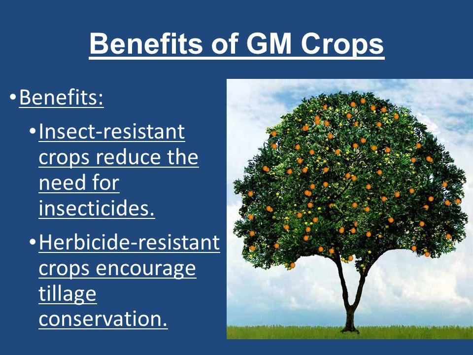 Benefits of GM Crops Benefits: