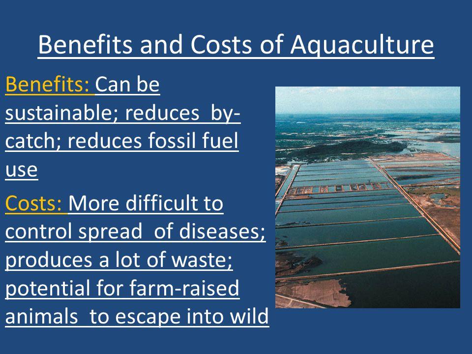 Benefits and Costs of Aquaculture