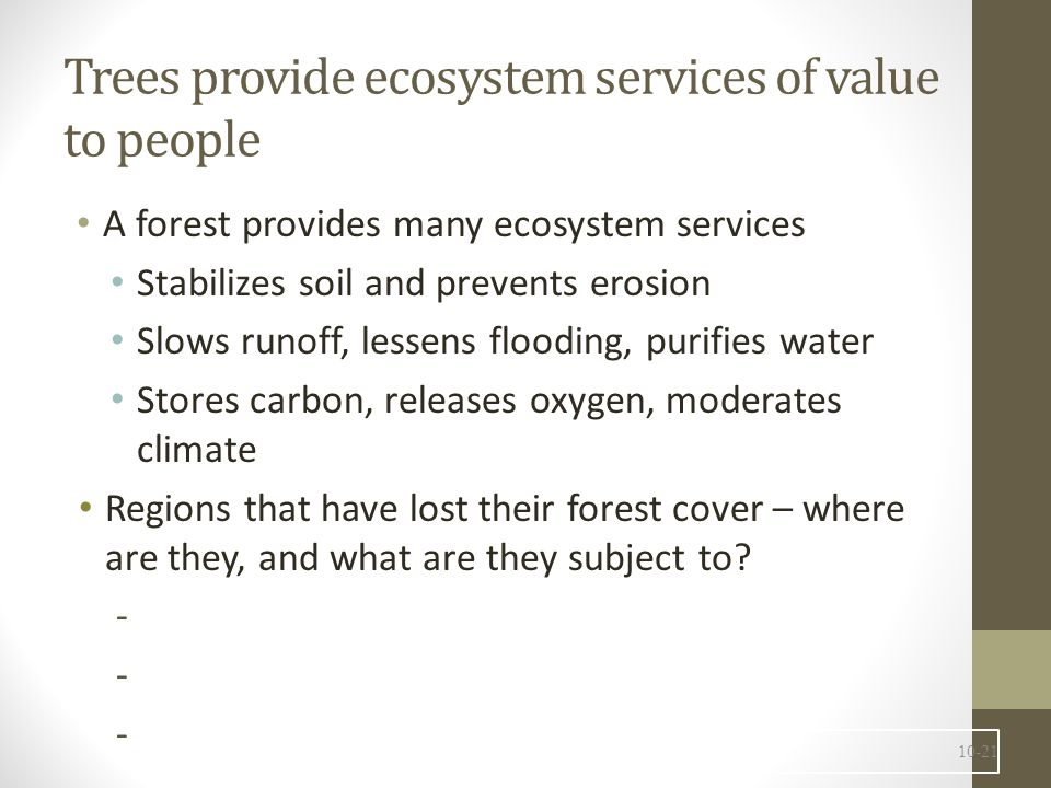 Trees provide ecosystem services of value to people