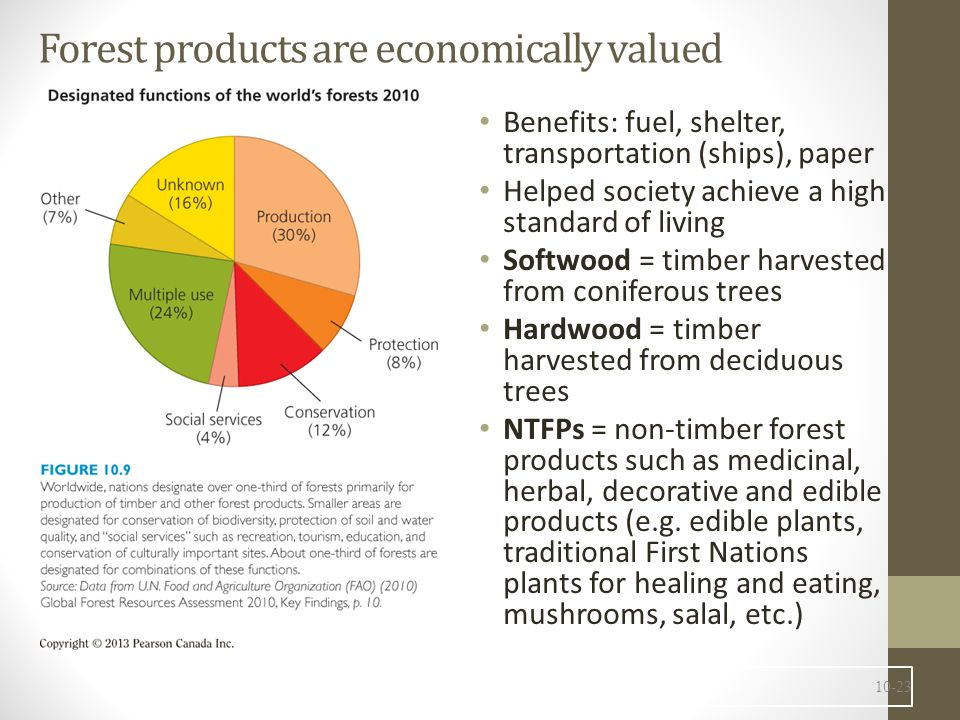 Forest products are economically valued