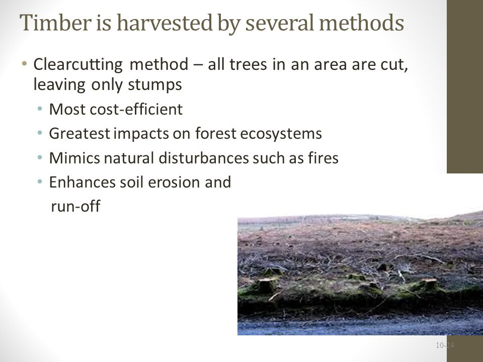 Timber is harvested by several methods