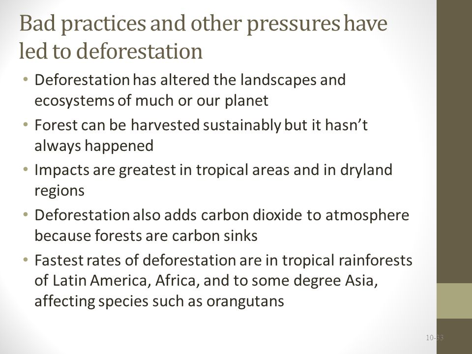 Bad practices and other pressures have led to deforestation