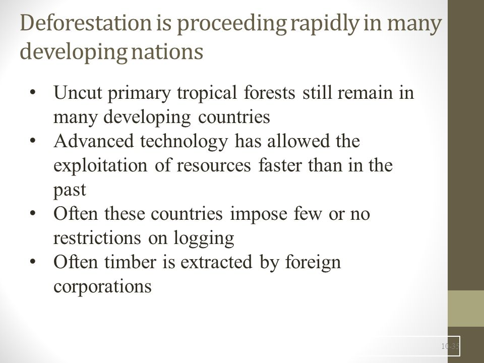 Deforestation is proceeding rapidly in many developing nations