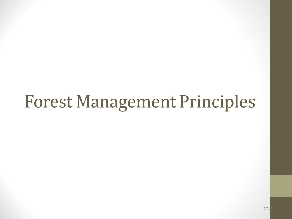 Forest Management Principles