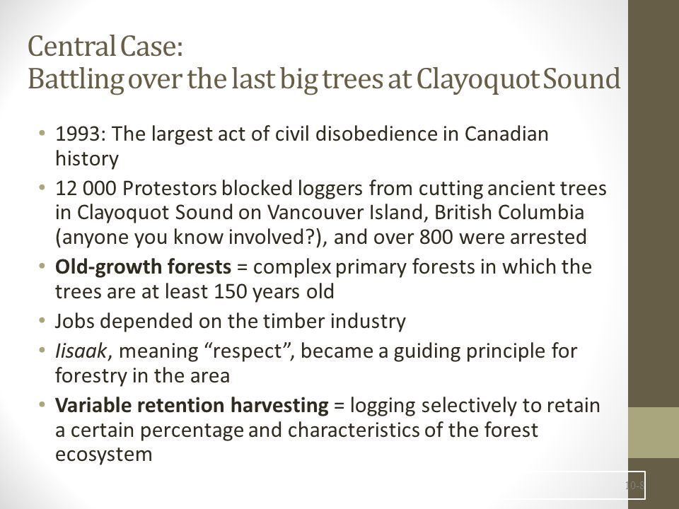 Central Case: Battling over the last big trees at Clayoquot Sound