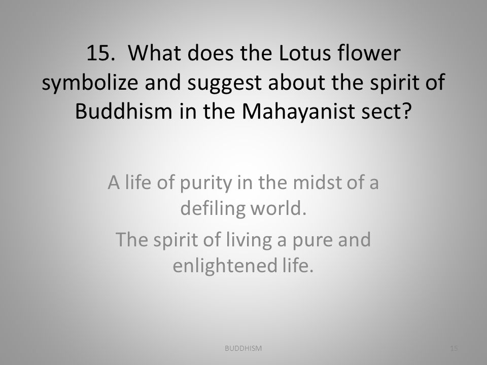 15. What does the Lotus flower symbolize and suggest about the spirit of Buddhism in the Mahayanist sect