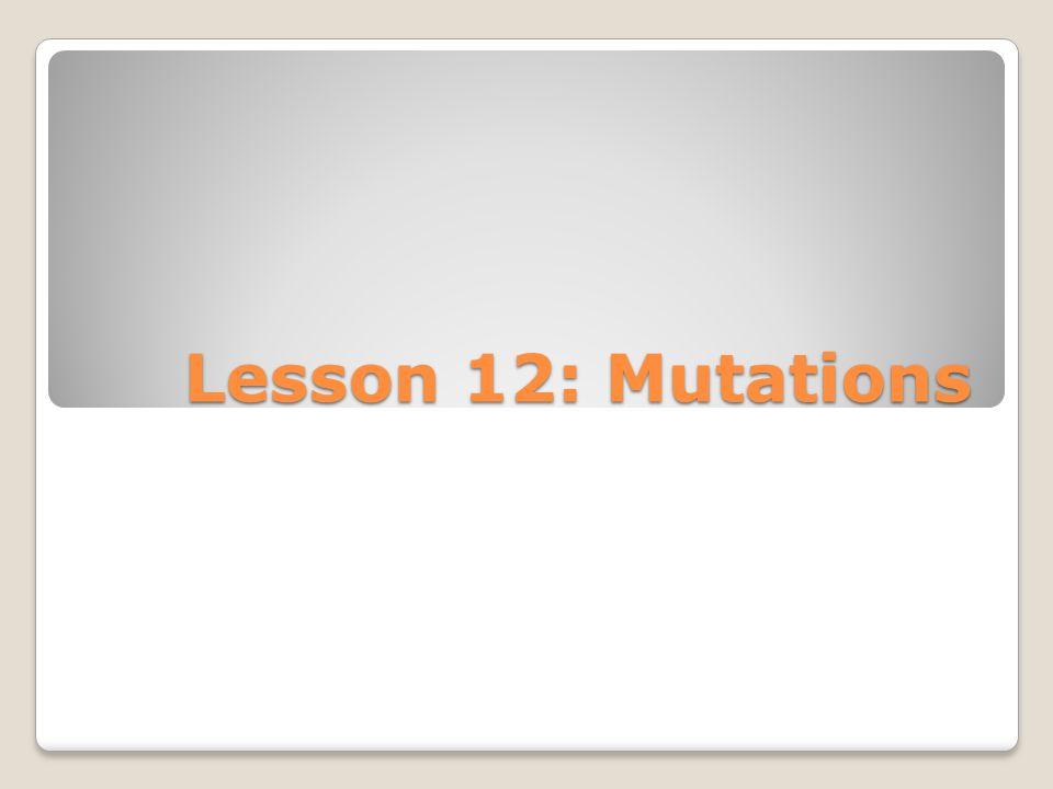Lesson 12: Mutations