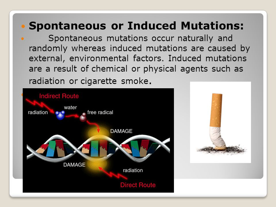 Spontaneous or Induced Mutations: