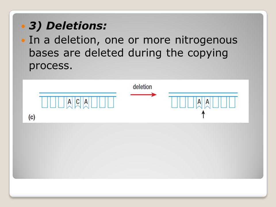 3) Deletions: In a deletion, one or more nitrogenous bases are deleted during the copying process.