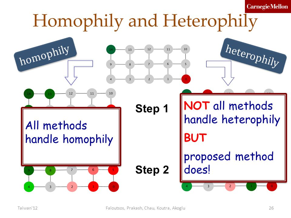 Homophily and Heterophily