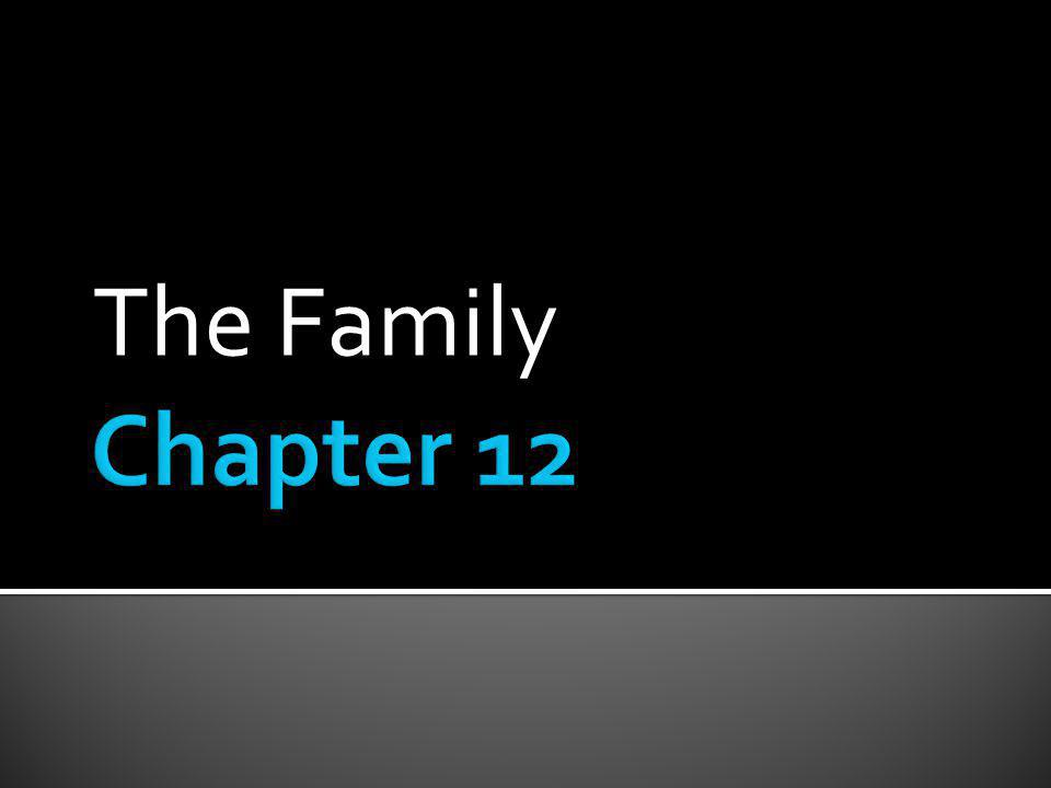 The Family Chapter 12