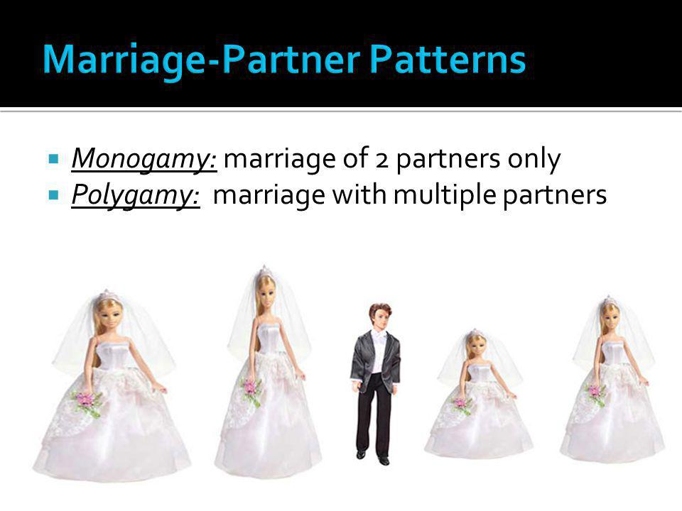 Marriage-Partner Patterns