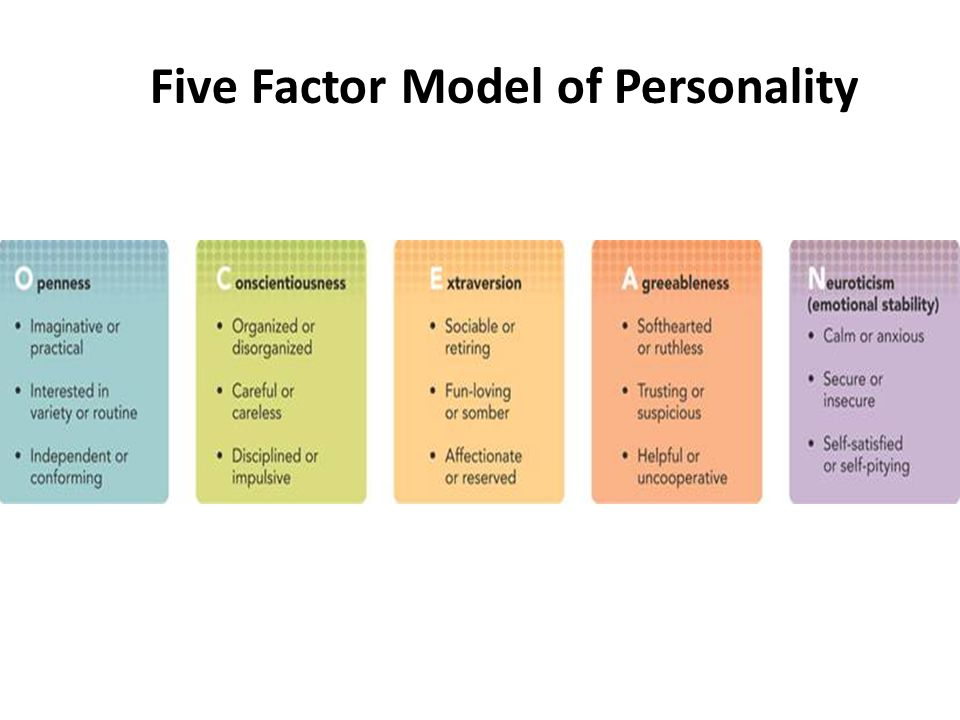 big five factor theory This depicts a theory that describes personality using five basic traits and shows how the model has been used to assess employee absence, expatriate success, job.