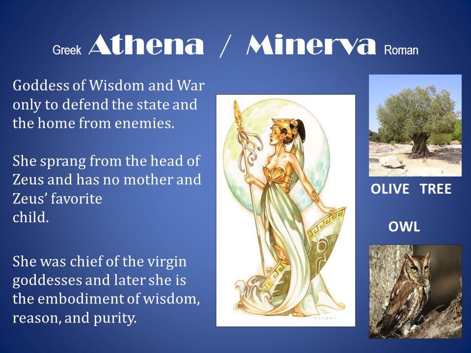 Greek Athena / Minerva Roman