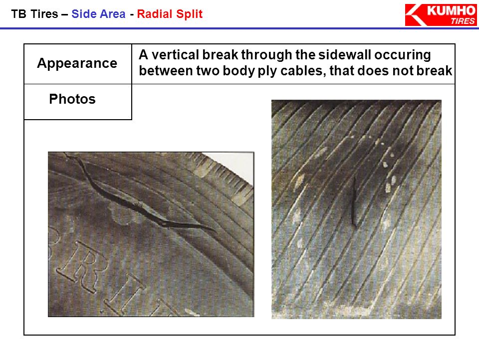 TB Tires – Side Area - Radial Split