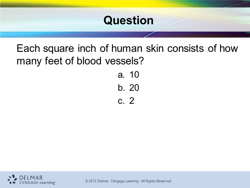 Question Each square inch of human skin consists of how many feet of blood vessels 10 20 2