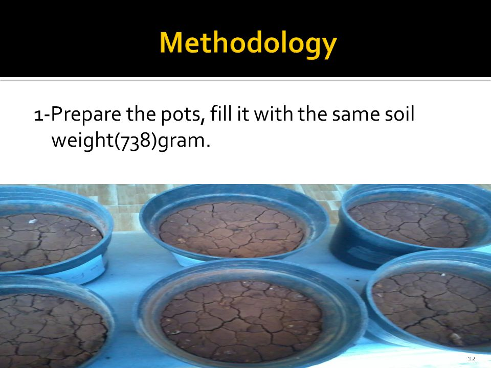 Methodology 1-Prepare the pots, fill it with the same soil weight(738)gram.