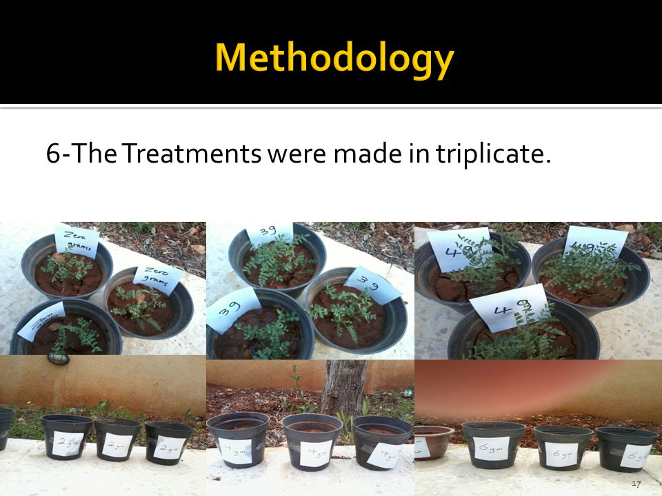 Methodology 6-The Treatments were made in triplicate.