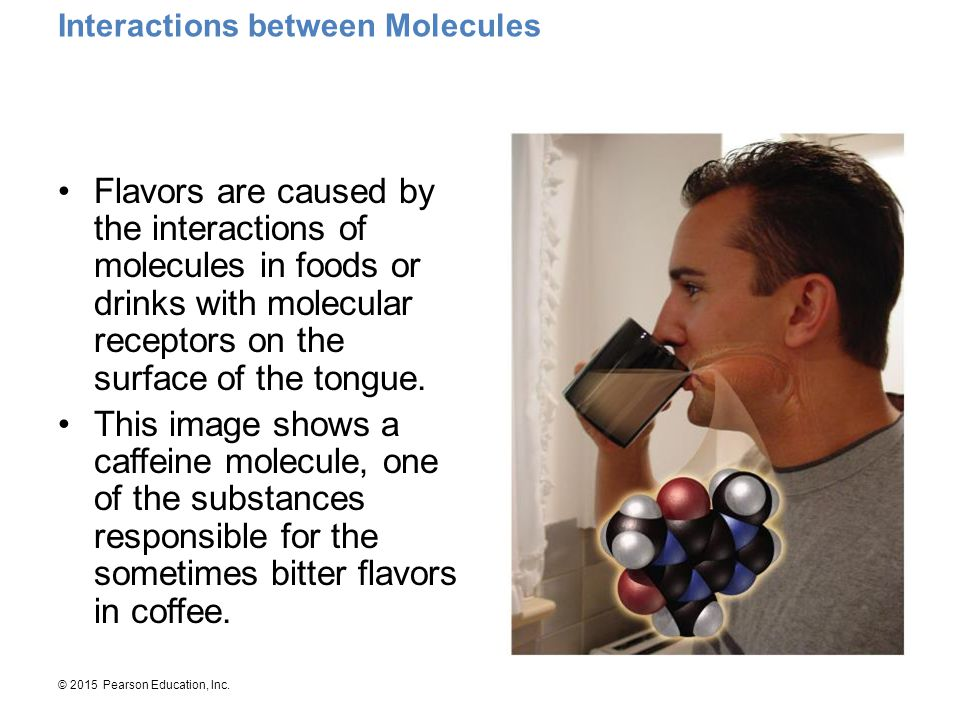 Interactions between Molecules