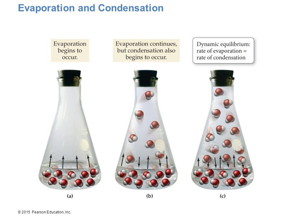 Evaporation and Condensation