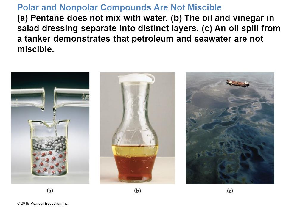 Polar and Nonpolar Compounds Are Not Miscible (a) Pentane does not mix with water.