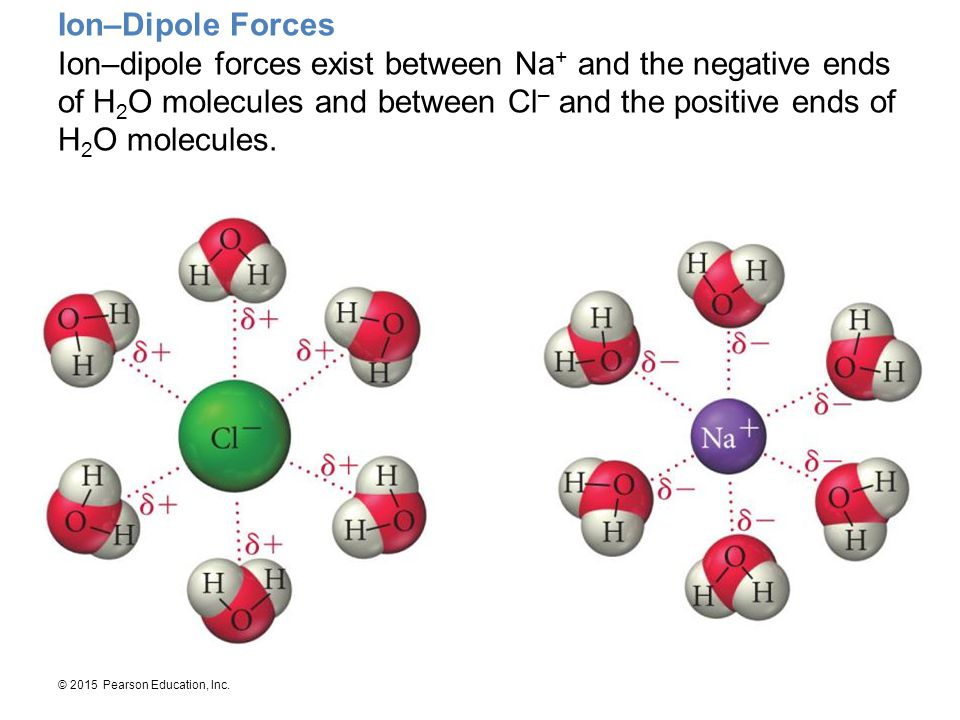 Ion–Dipole Forces Ion–dipole forces exist between Na+ and the negative ends of H2O molecules and between Cl– and the positive ends of H2O molecules.