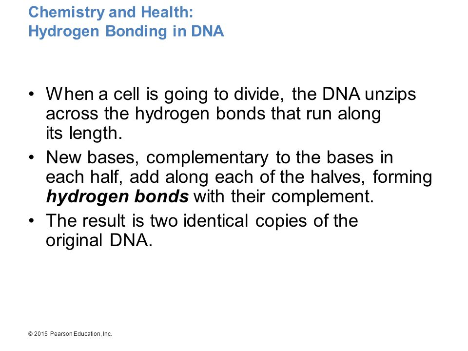 Chemistry and Health: Hydrogen Bonding in DNA