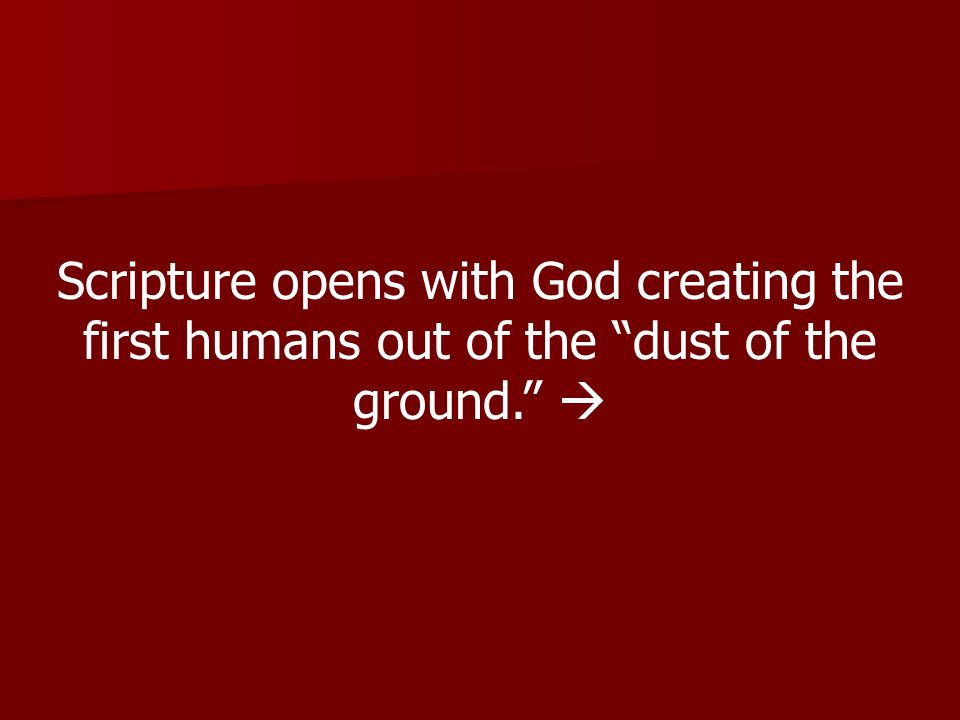 Scripture opens with God creating the first humans out of the dust of the ground. 