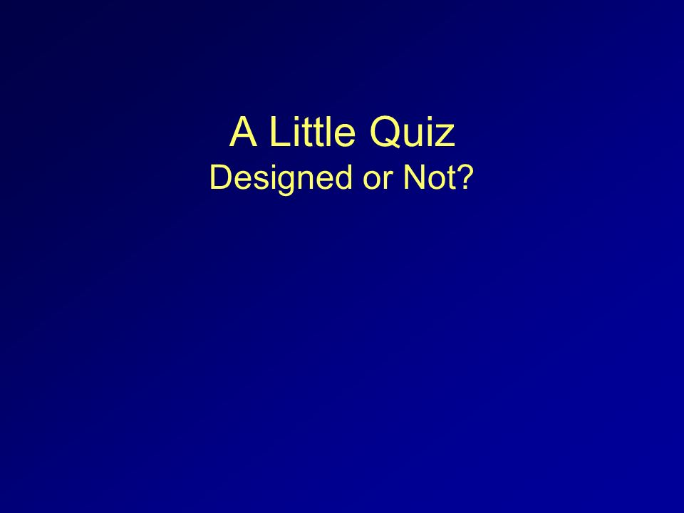A Little Quiz Designed or Not