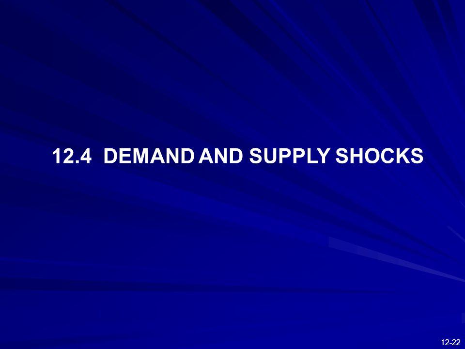 12.4 DEMAND AND SUPPLY SHOCKS