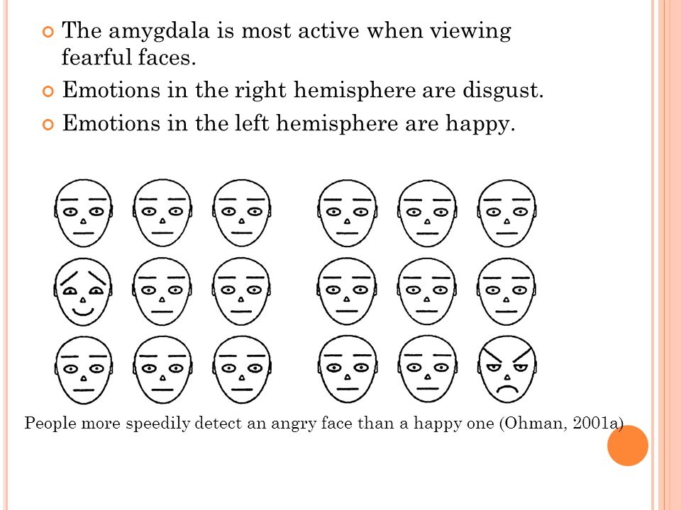 The amygdala is most active when viewing fearful faces.