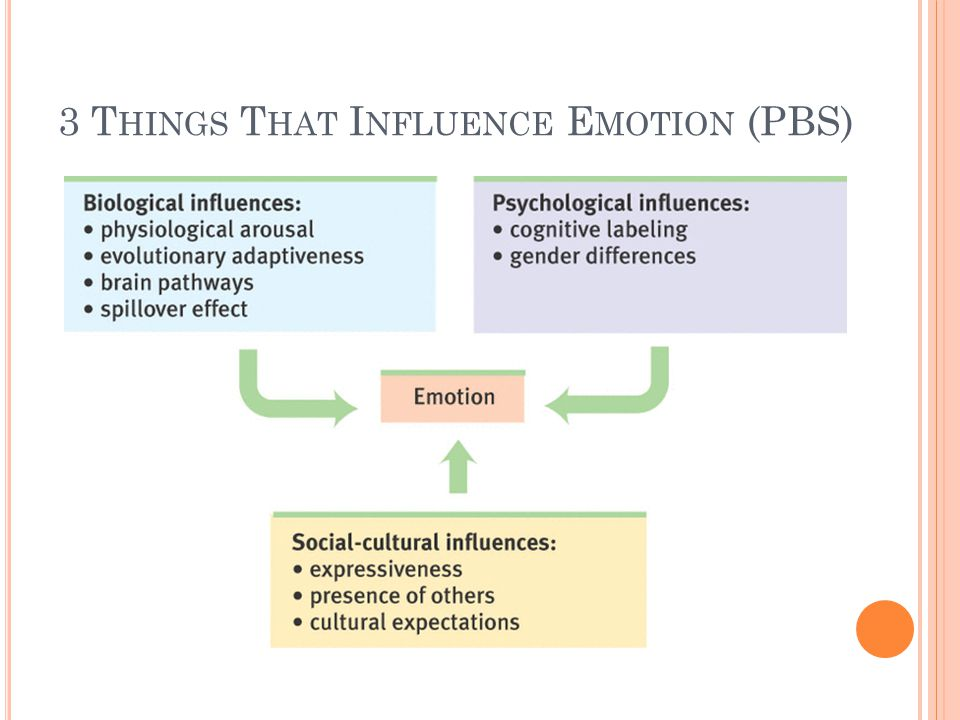 3 Things That Influence Emotion (PBS)