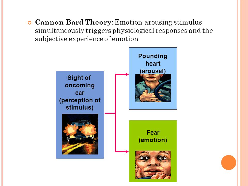 Cannon-Bard Theory: Emotion-arousing stimulus simultaneously triggers physiological responses and the subjective experience of emotion