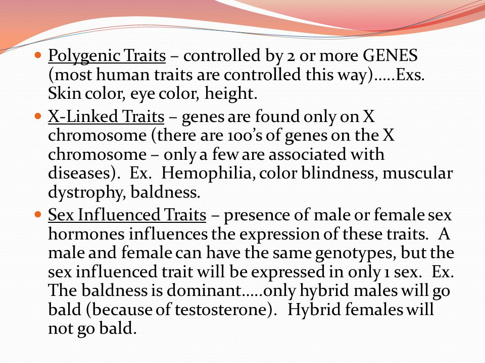 Polygenic Traits – controlled by 2 or more GENES (most human traits are controlled this way)…..Exs. Skin color, eye color, height.