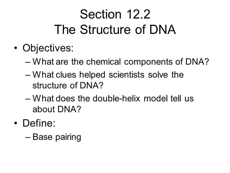 Section 12.2 The Structure of DNA